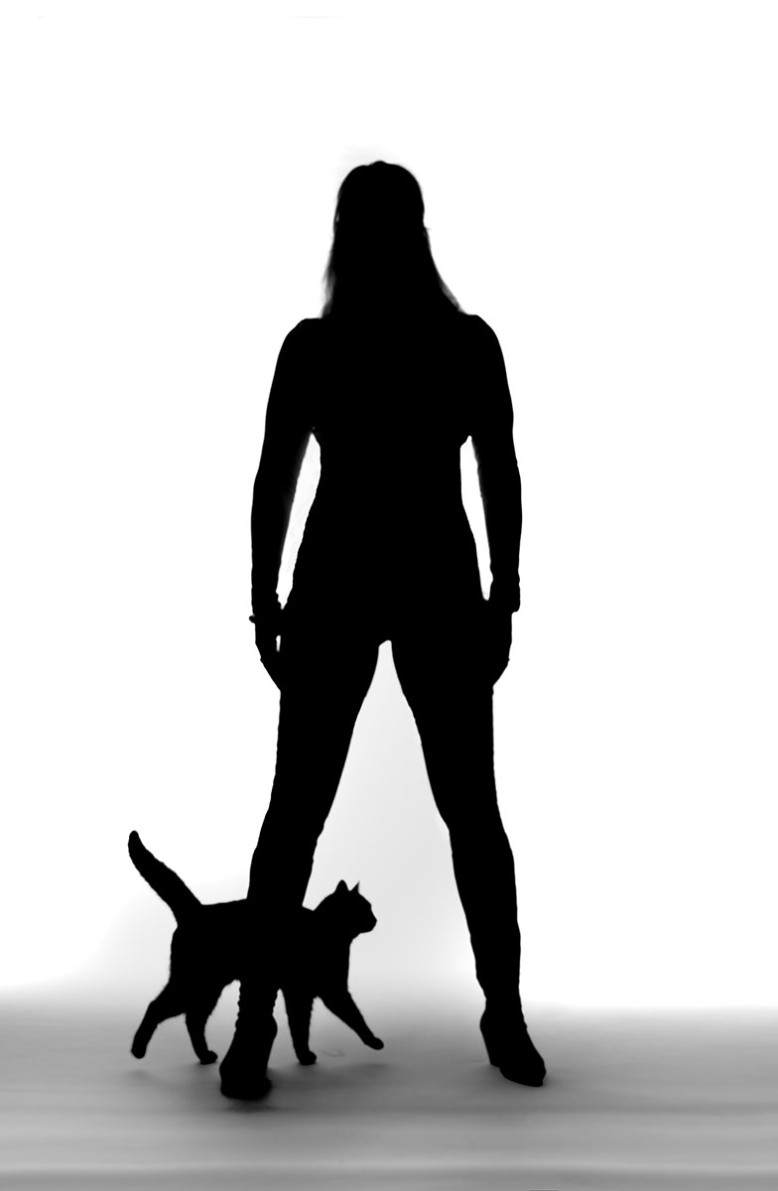 Silhouet cat woman